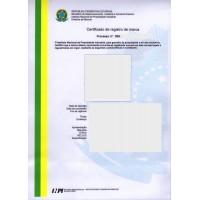 Brazil Trademark Registration Application