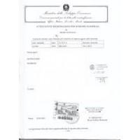 Italian Trademark Registration Application