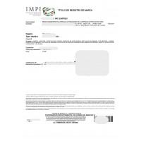 Mexico Trademark Registration Application